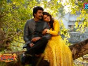 Seemarraja movie picture gallery